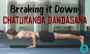 Back to Basics: How to Ease Into Chaturanga Dandasana