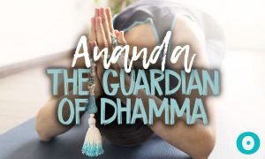 Ananda: Inside the World of Spiritual Retreat