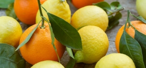 Lemons and oranges with leaves