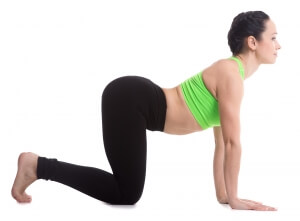 Beautiful sporty girl practices backbend in Cow yoga posture, Bitilasana, exercise for flexible spine and shoulders, asana often paired with Cat Pose on the exhale, yoga for stress