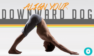 align your downward dog