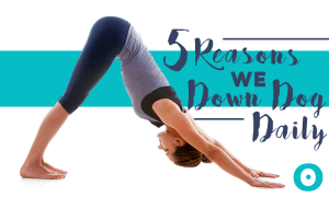 reasons to downward dog
