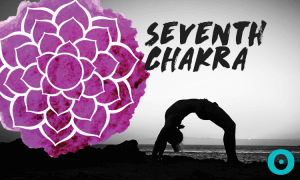 Article-SeventhChakra_2016