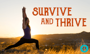 ayurveda thanksgiving survival guide