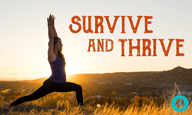 ayurveda thanksgiving survival guide