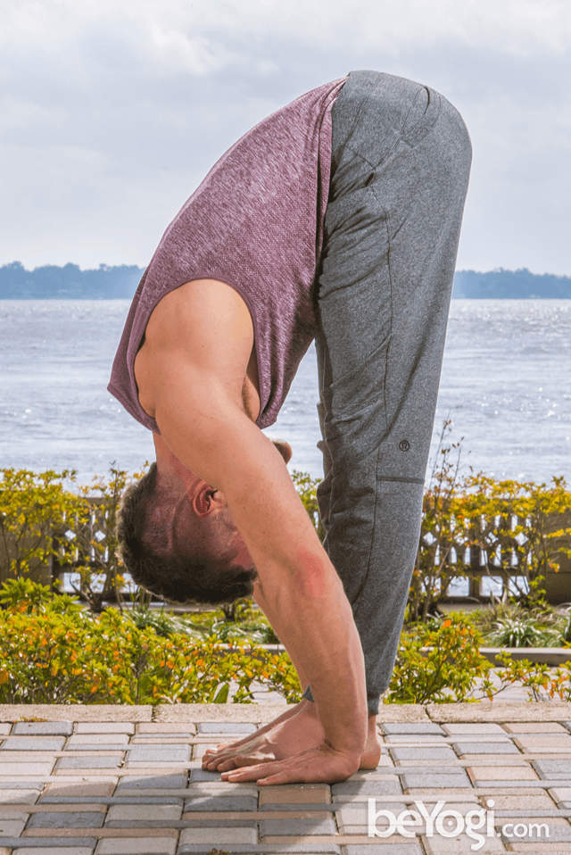 Standing Forward Bend - Uttanasana
